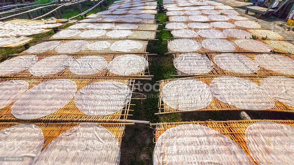 Cake noodles drying on the field stock photo