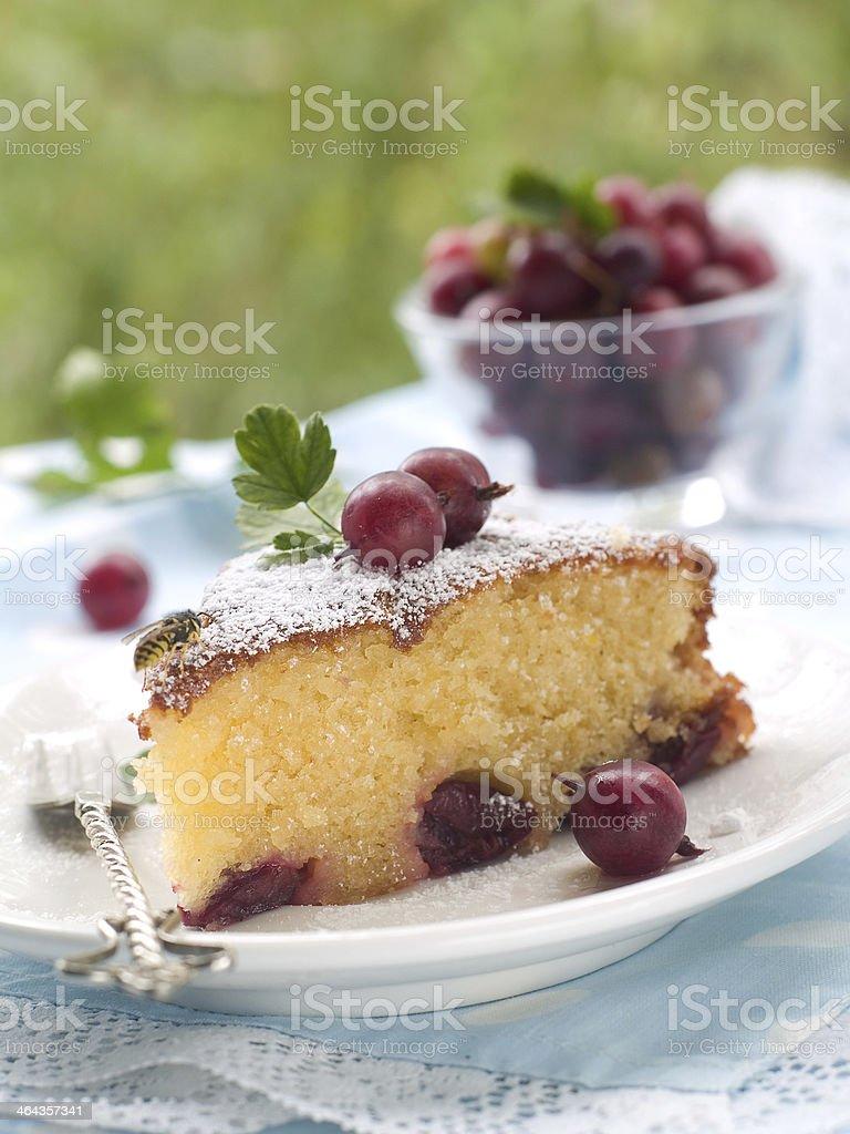 cake stock photo