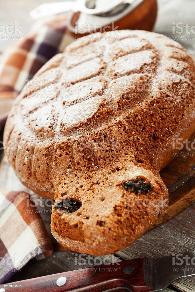 Cake 'Turtle' with sugar powder stock photo