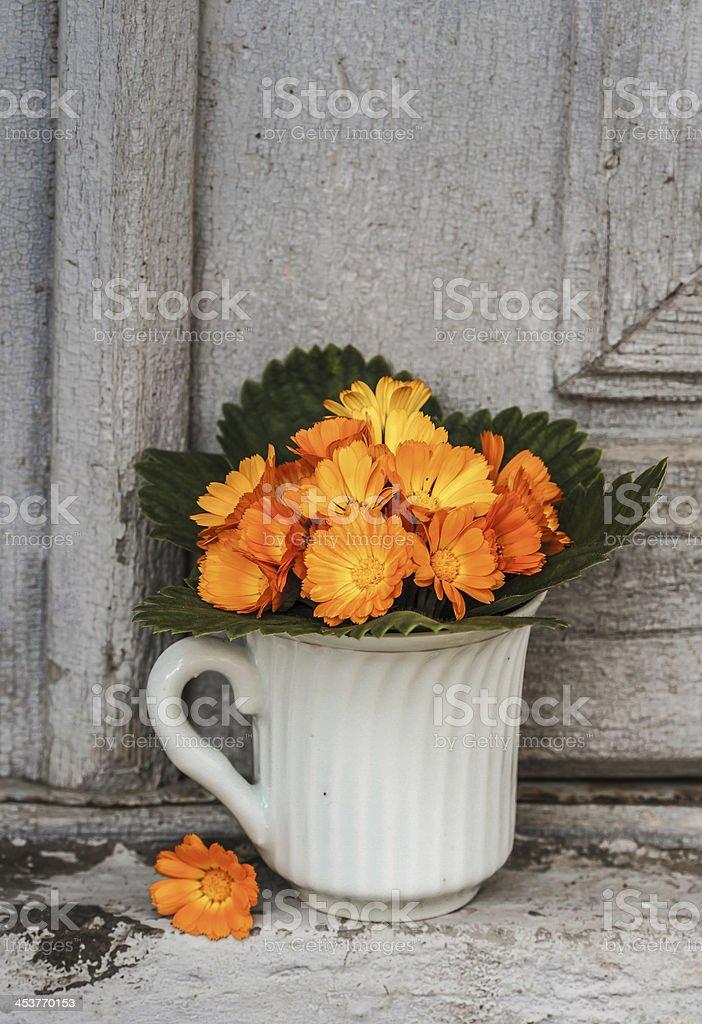 Calemdula flowers royalty-free stock photo