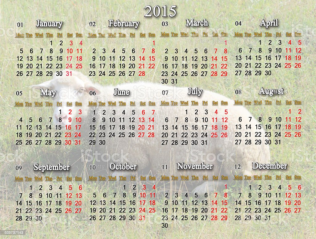 calendar for 2015 with sheep on the background stock photo