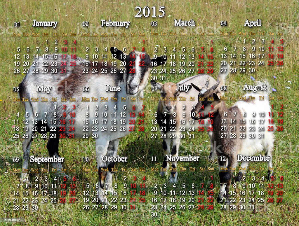 calendar for 2015 year with goats stock photo