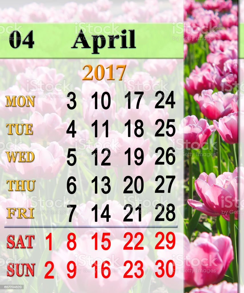calendar for April 2017 with lilac tulips stock photo