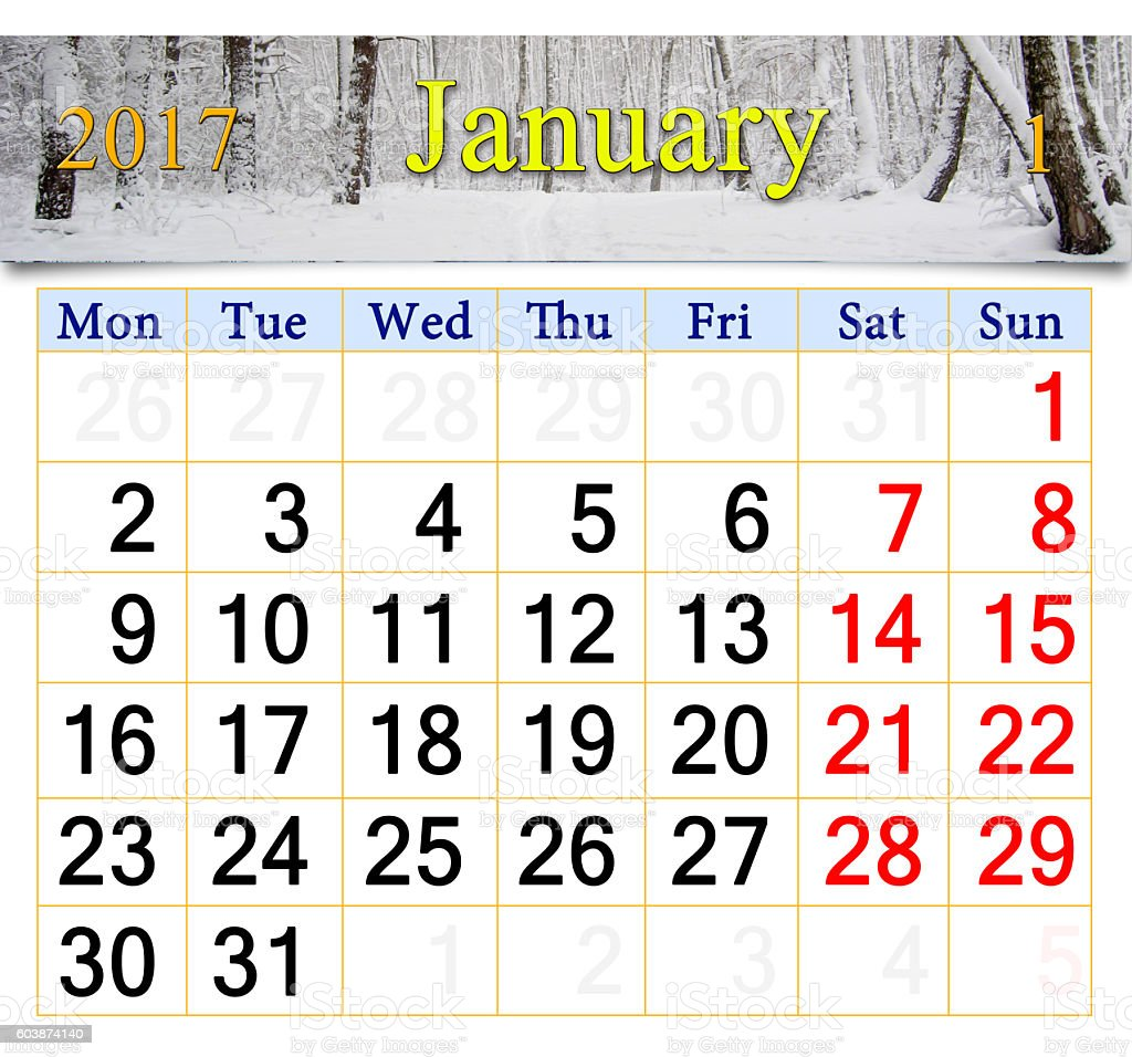 calendar for January 2017 with birch grove stock photo