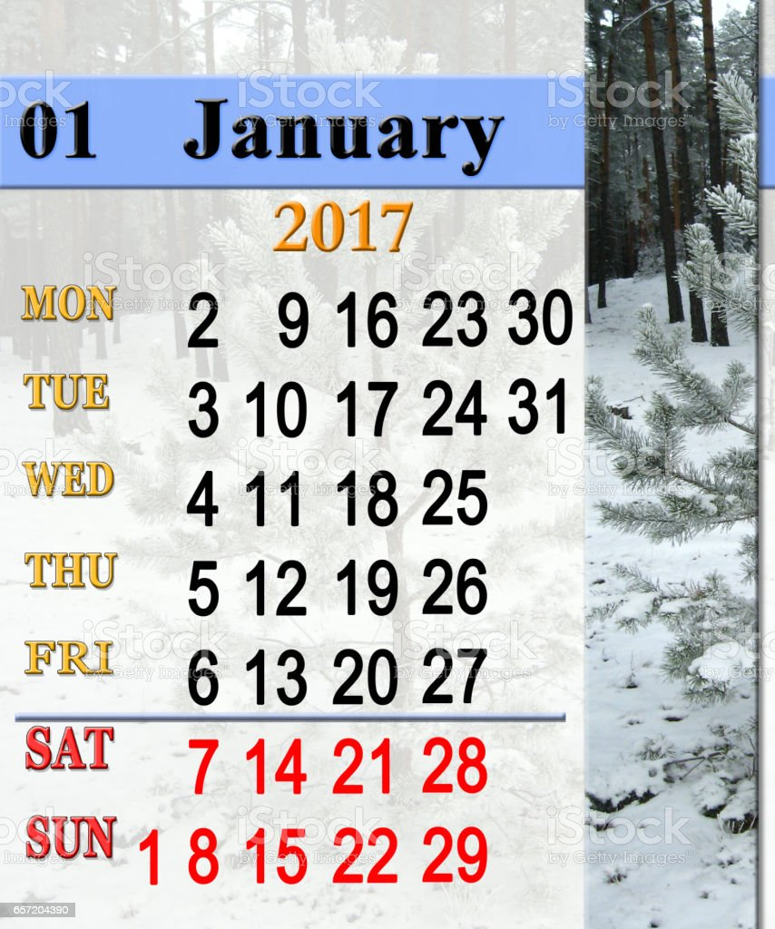 calendar for January 2017 with winter pines stock photo