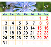 calendar for July 2017 with flowers of Cichorium