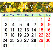 calendar for July 2017 with flowers of St.-John's wort