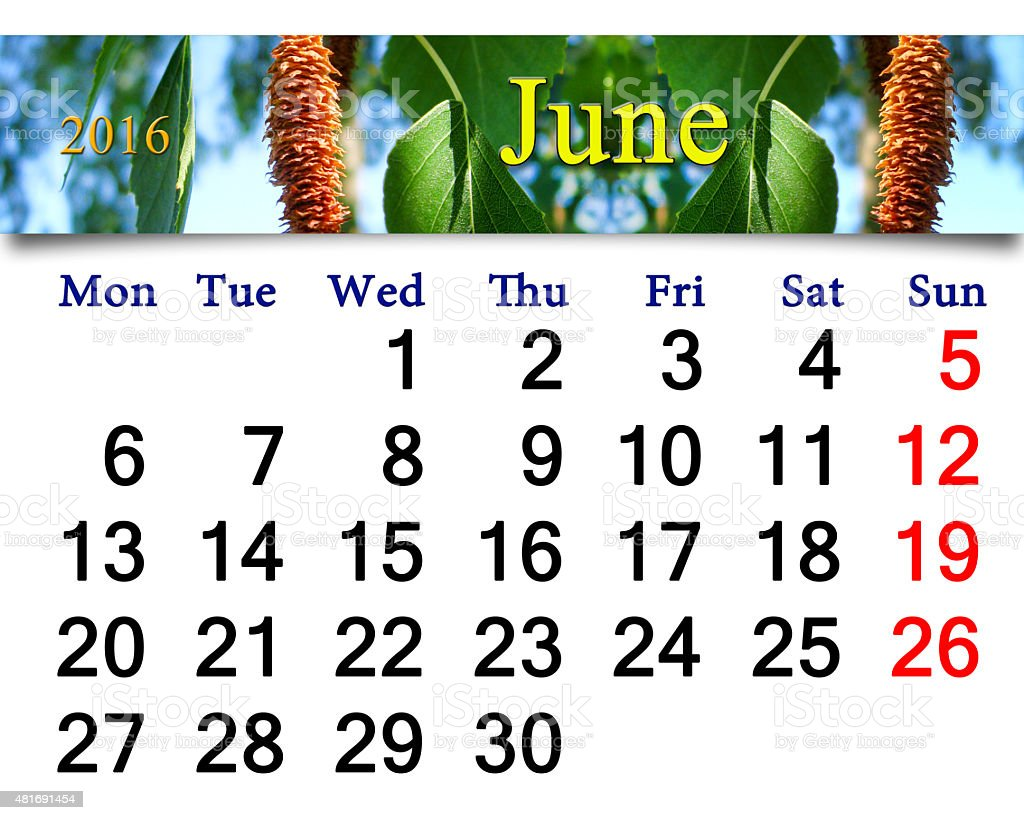 calendar for June 2016 with birch's leaves stock photo