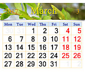 calendar for March 2017 with young sprouts of the willow