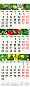 Calendar for May June July 2017 with pictures