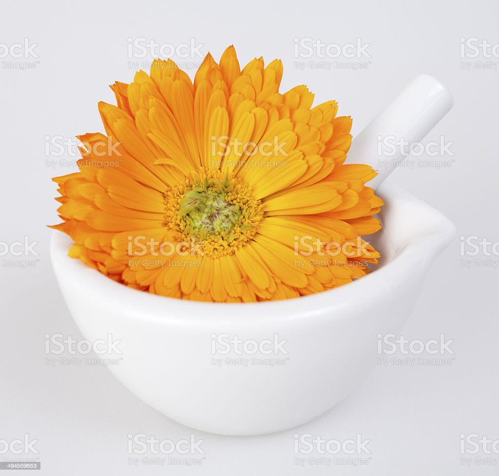 Calendula flower in a mortar and pestle royalty-free stock photo