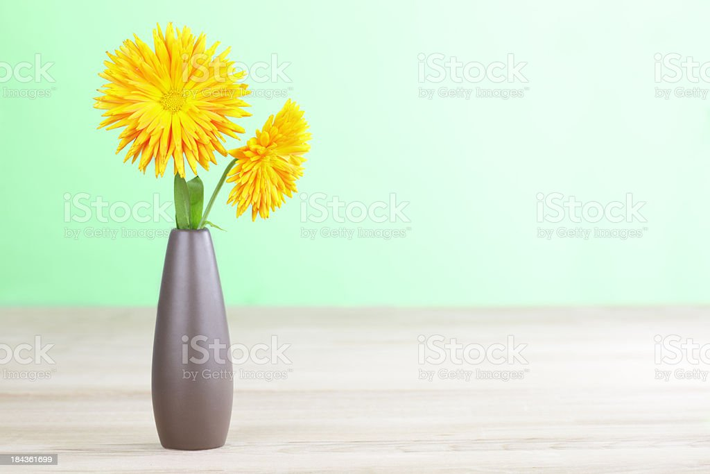 Calendula Flowers in a Brown Vase stock photo
