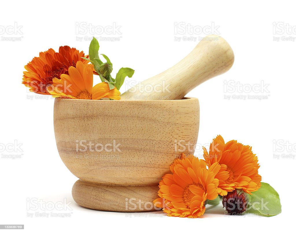 Calendula flowers stock photo