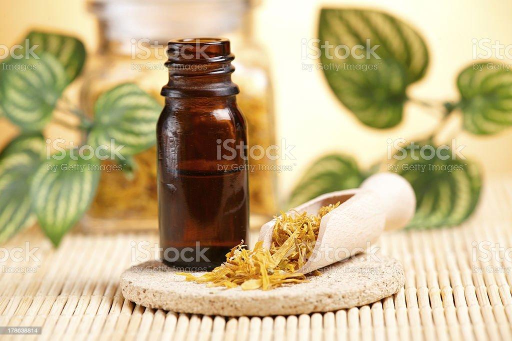 Calendula petals and oil stock photo