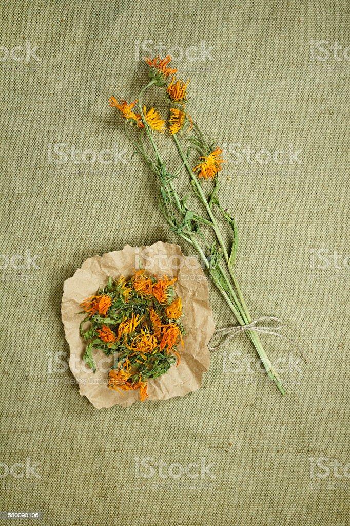 Calendula.Dried. Herbal medicine, phytotherapy medicinal herbs. stock photo
