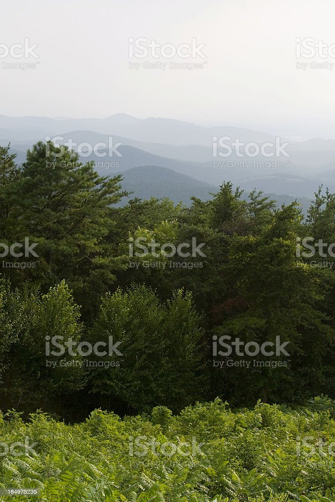 Calf Mtn overlook, Skyline drive, Shenandoah national park royalty-free stock photo