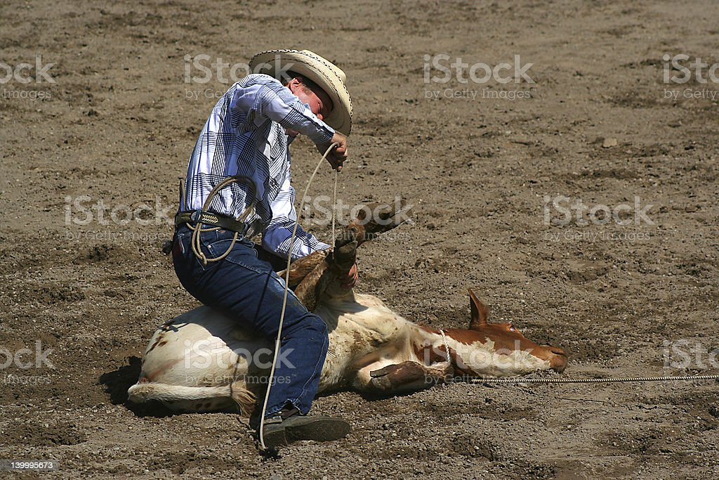 Calf Roper royalty-free stock photo