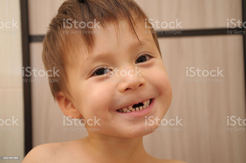 Calf's teeth changing stock photo