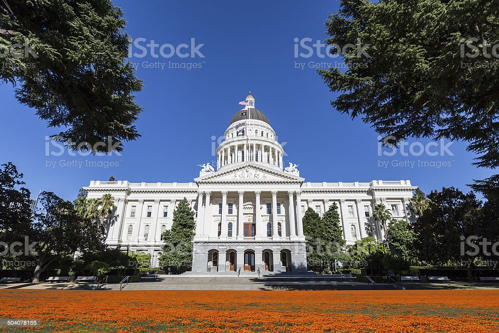 California Capitol Building with Poppies stock photo