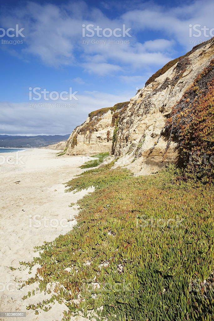 California Cliffs and Beach at Half Moon Bay royalty-free stock photo