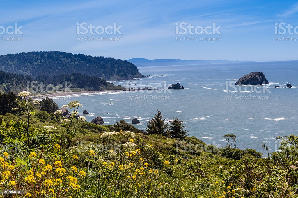 California Coast north of Klamath stock photo