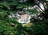 California coastal home framed by pine trees