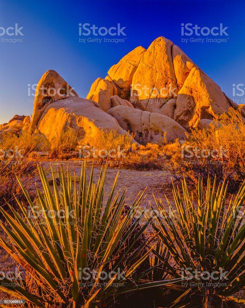 California desert at sunset Joshua Tree National Park stock photo
