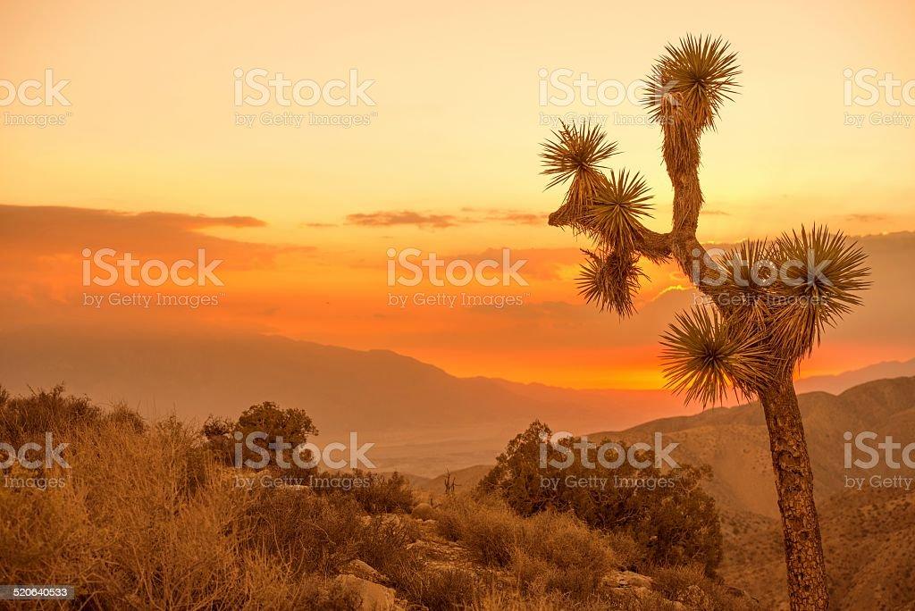 California Desert Scenery stock photo