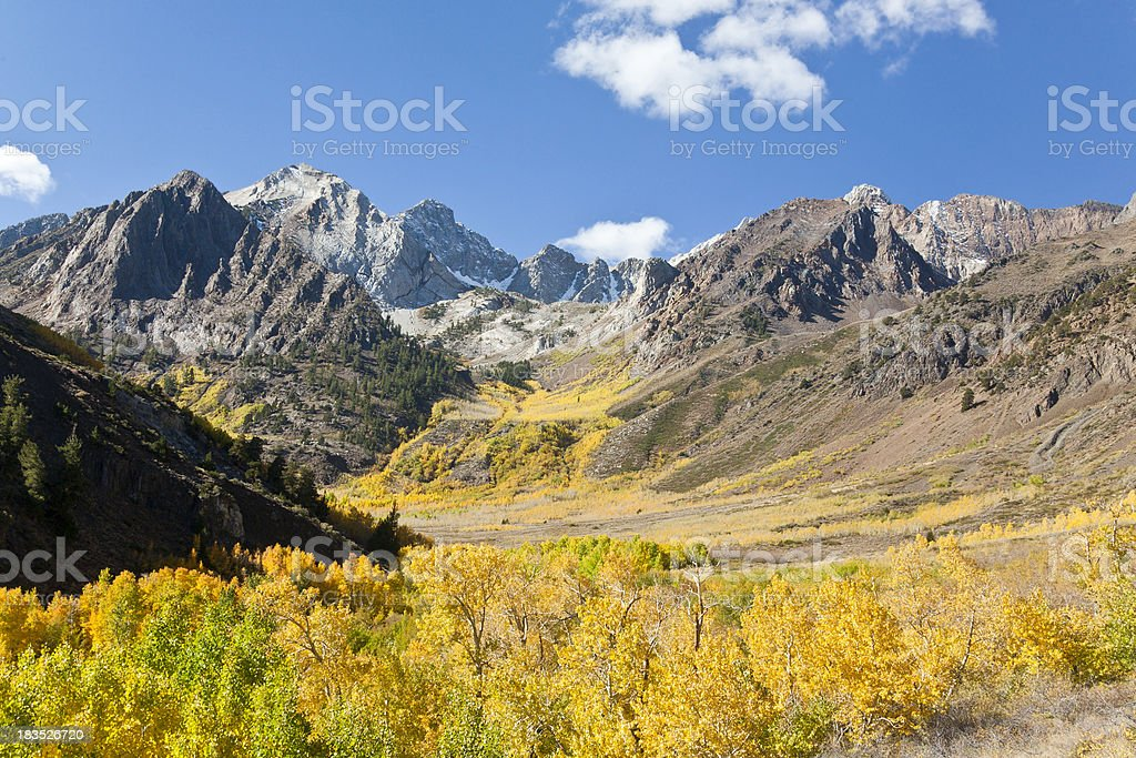 California: Fall Colors, McGee Creek Valley, Eastern Sierra Nevada stock photo