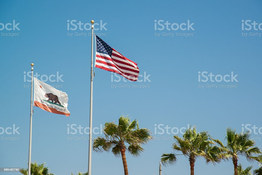 california flag with blue sky and palm tree stock photo