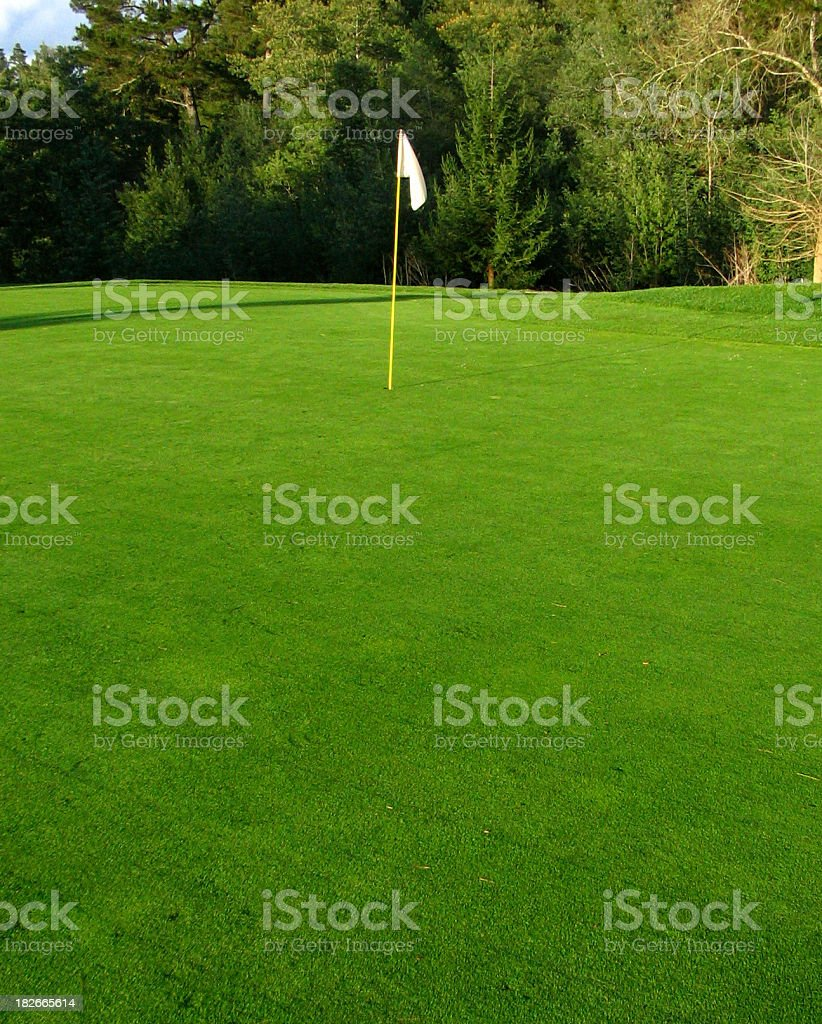 California golf green and hole royalty-free stock photo