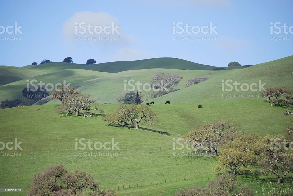 California landscape royalty-free stock photo