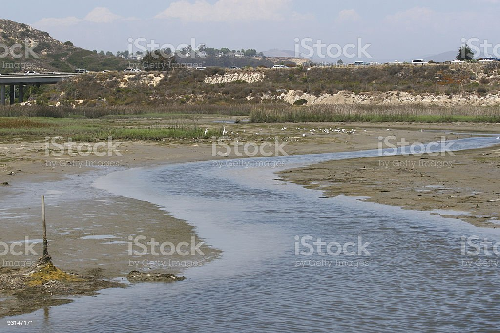 California Marshes royalty-free stock photo