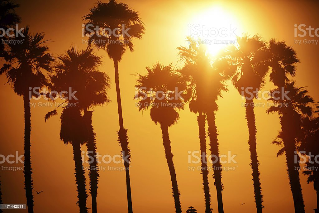 California stock photo