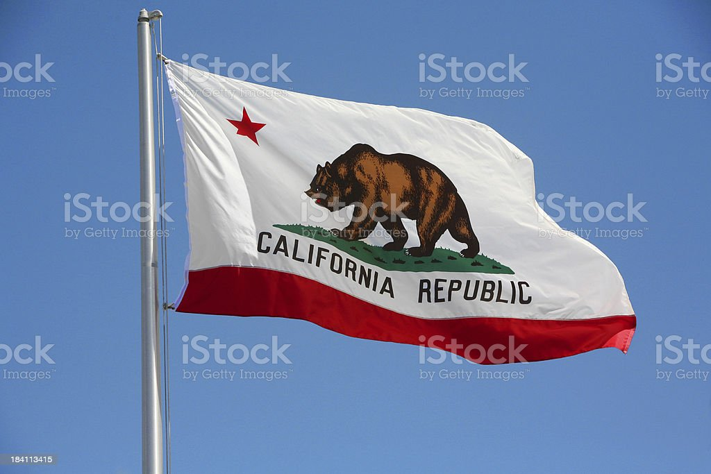 California Republic flag with a brown bear on stock photo