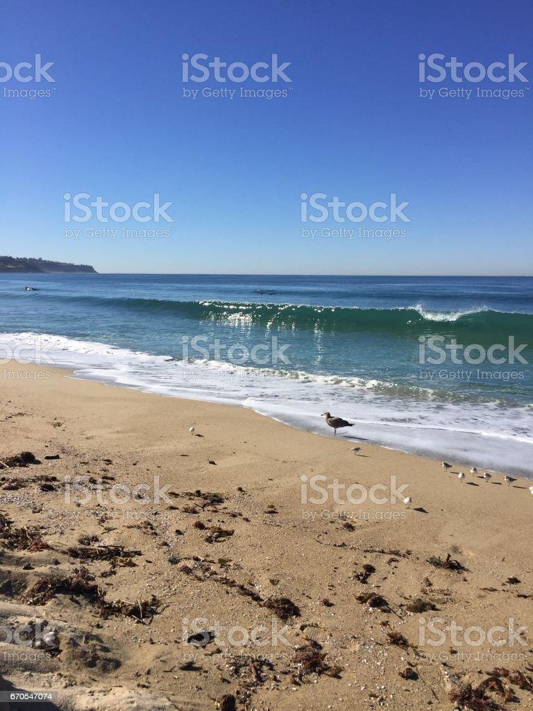California Shore stock photo