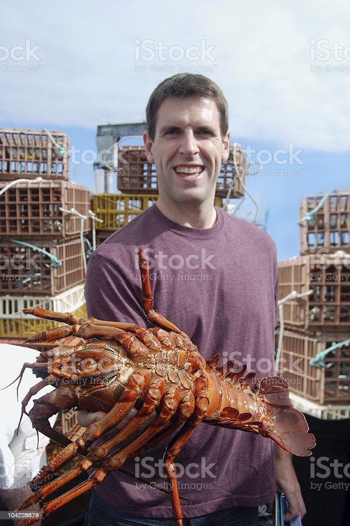 California Spiny Lobster royalty-free stock photo