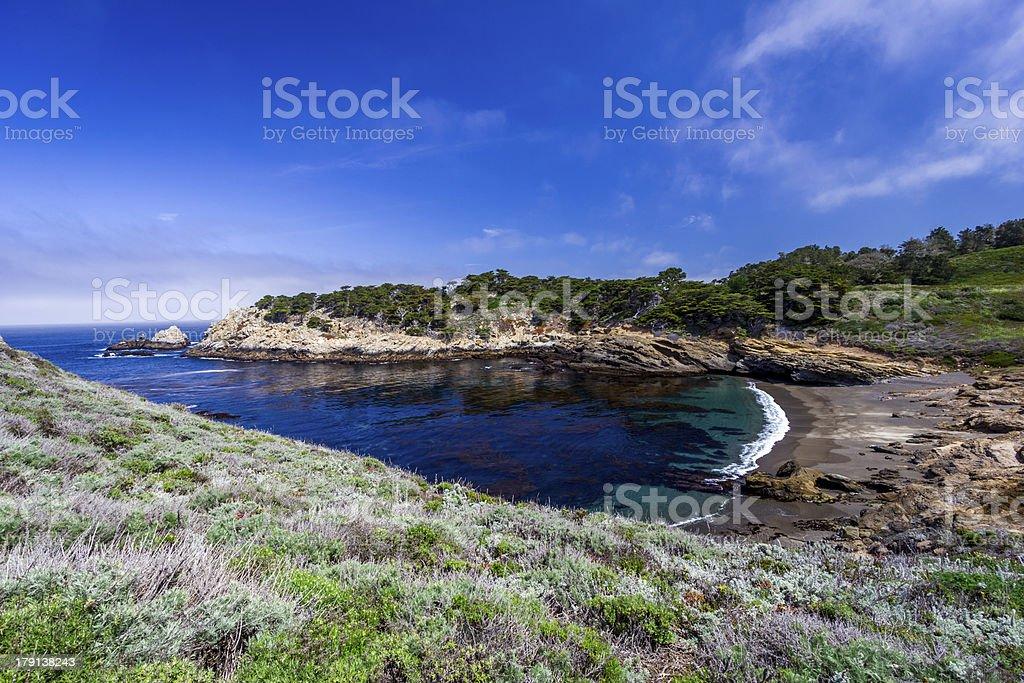 Californian Beach royalty-free stock photo