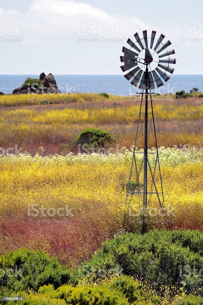 California's Central Coast, Big Sur, USA stock photo