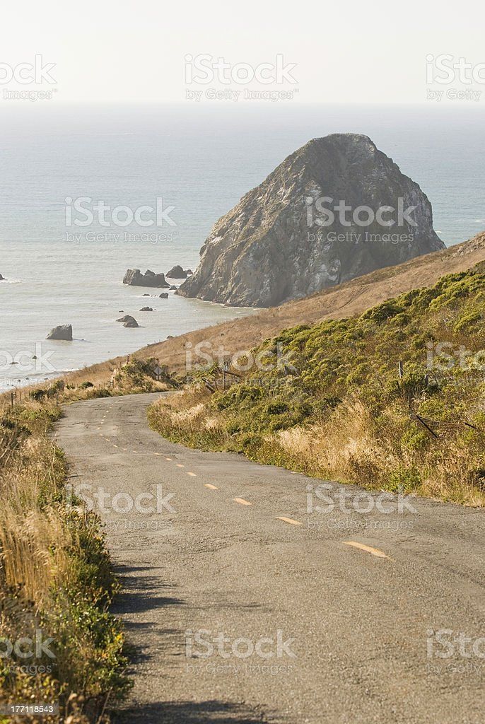 California's Lost Coast royalty-free stock photo