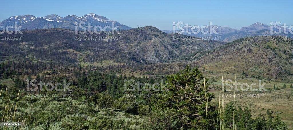 California's Monitor Pass stock photo