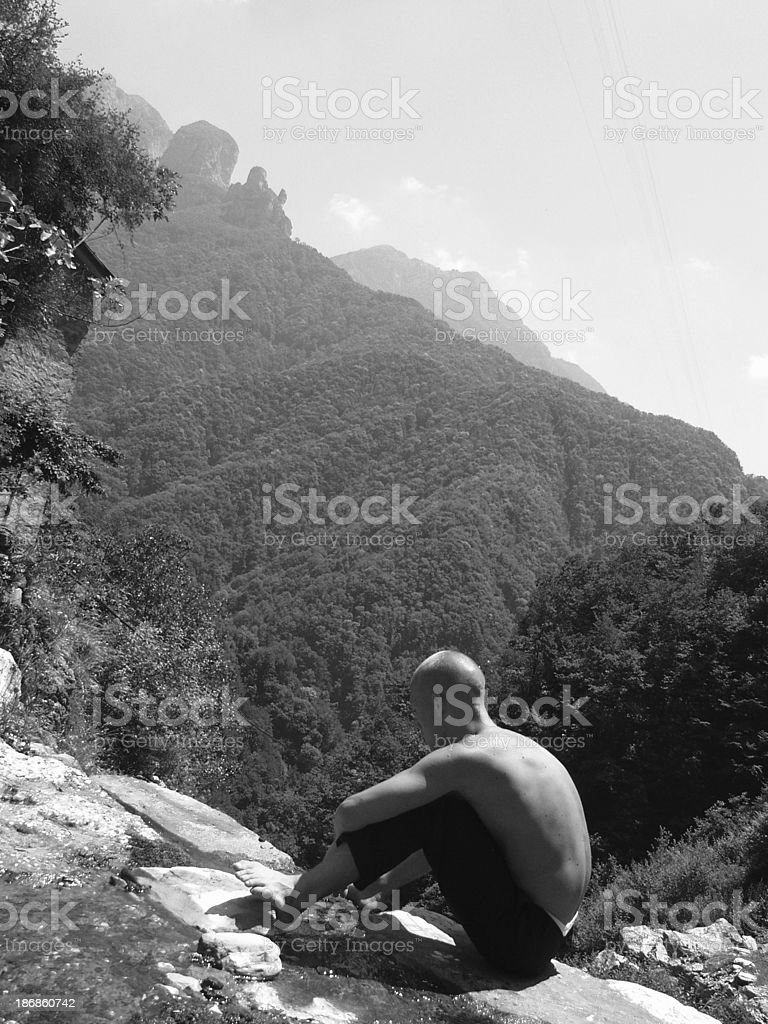 Call of the Wild (Who am I ) royalty-free stock photo