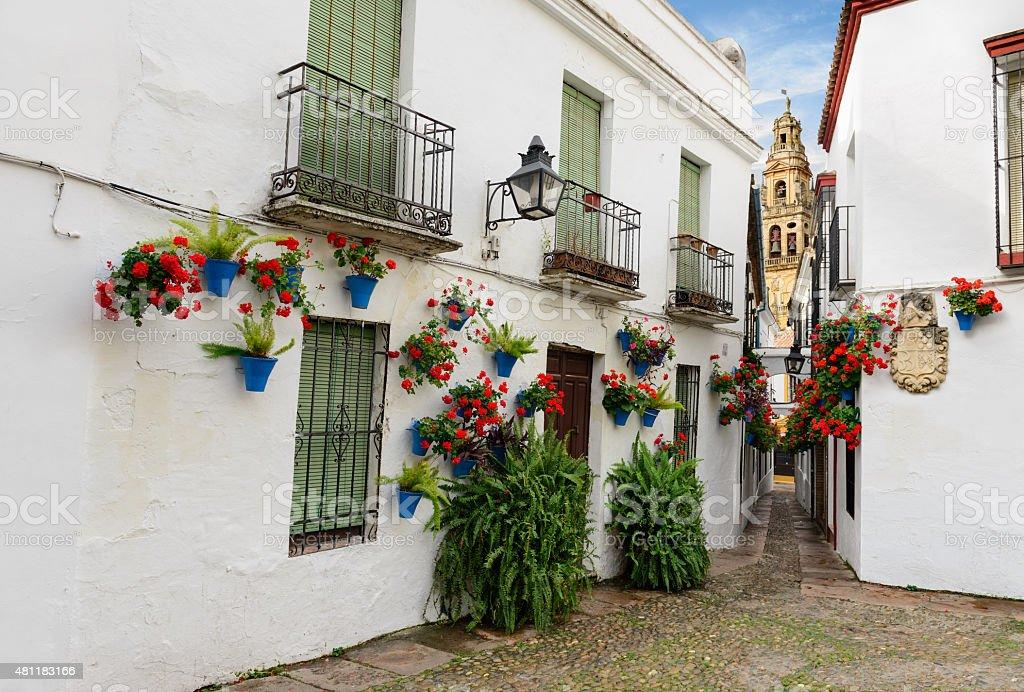 Calle de las Flores with Mezquita stock photo