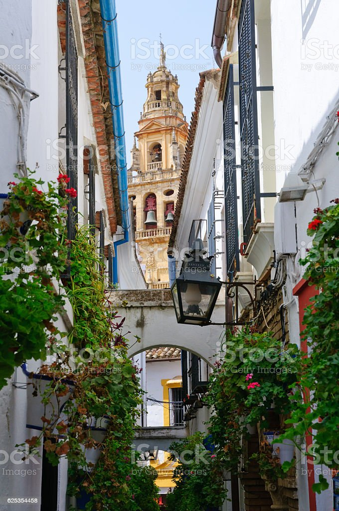 Calleja de las Flores, La Juderia in Cordoba, Spain stock photo