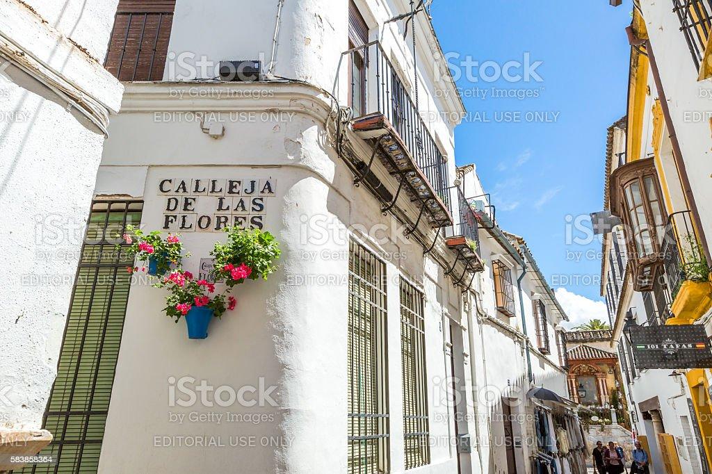 Calleja de las Flores stock photo