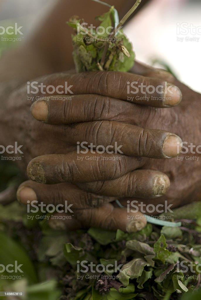Calloused hand 2 stock photo