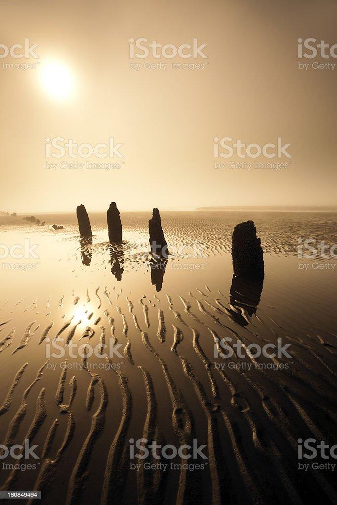 Calm Foggy Beach royalty-free stock photo