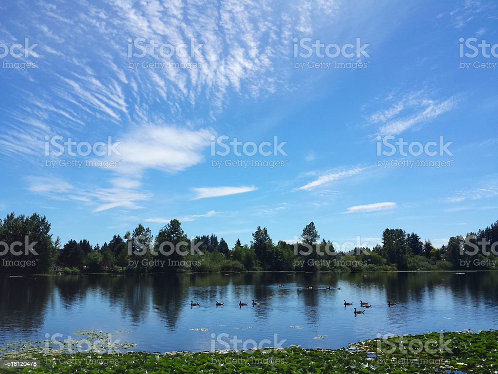 Calm Lake with Blue Sky stock photo