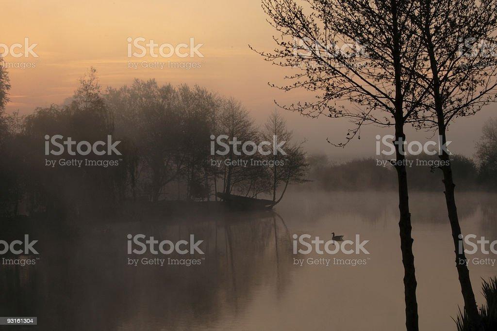 Calm, misty lake at dawn stock photo