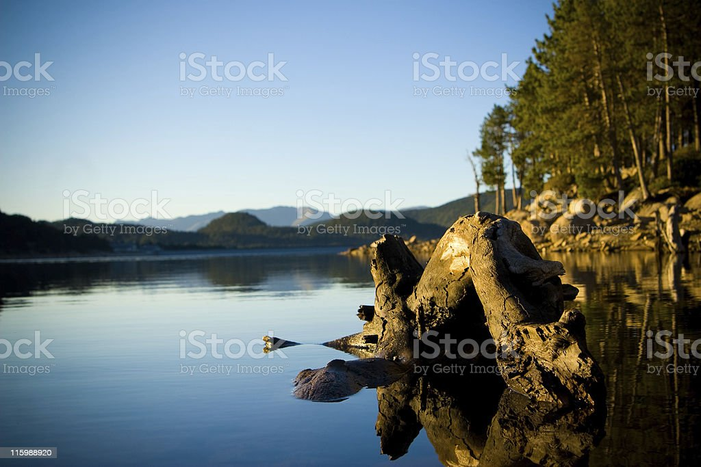 Calm royalty-free stock photo
